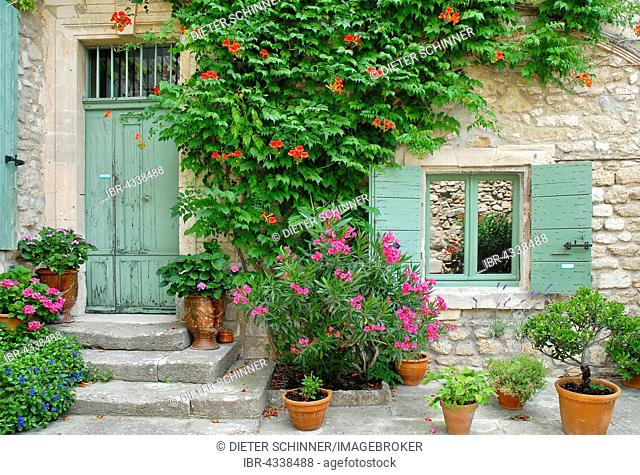 Entrance with blooming flowers, Ménerbes, Luberon, Provence, Provence-Alpes-Côte d'Azur, France