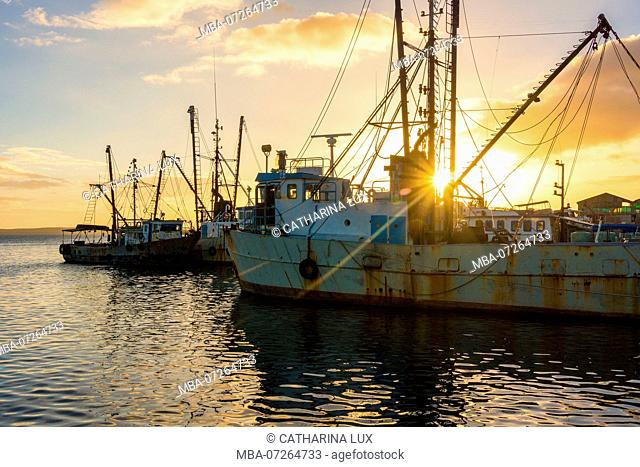 Cuba, Cienfuegos, harbor, evening light