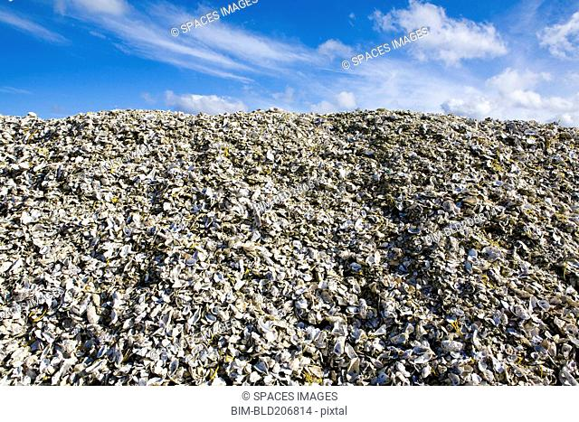Heap of garbage in landfill
