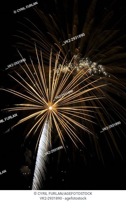 Golden Sky Rocket. Fourth of july
