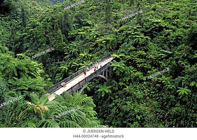 Neuseeland, Whanganui Nationalpark | Bridge to nowhere, Bruecke nach nirgendwo, Dschungel, | new zealand briudge to nowhere, Whanganui National Park