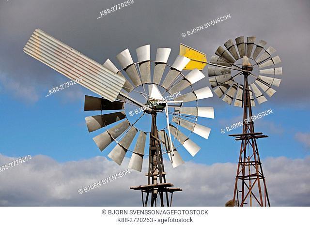Windpumps on a farm in country Victoria, Australia