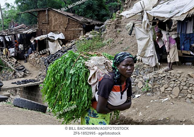 Konso Ethiopia Africa tribal village Lower Omo Valley market local woman carrying heavy load of branches for hut