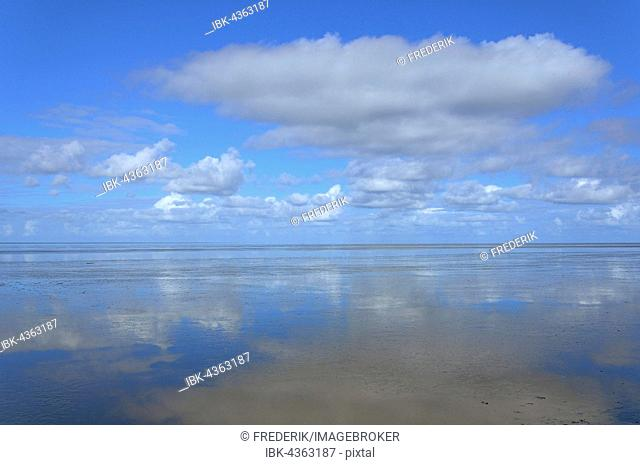 Clouds reflecting in the Wadden Sea, North Sea, Lower Saxony, Germany