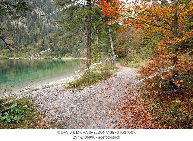 Landscape of a little trail going beside a clear lake (Plansee) in autumn in Tirol, Austria