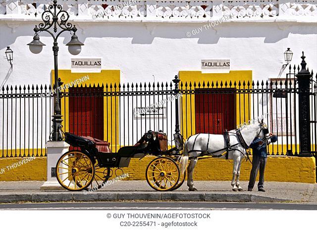 Tourist horse caleche, in front of Plaza de Toros, Sevilla, Andalusia, Spain