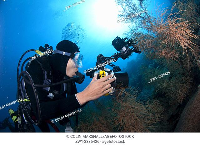 Diver (model released) with camera with sun in background, Ash Point dive site, Komba Island, near Alor, Indonesia