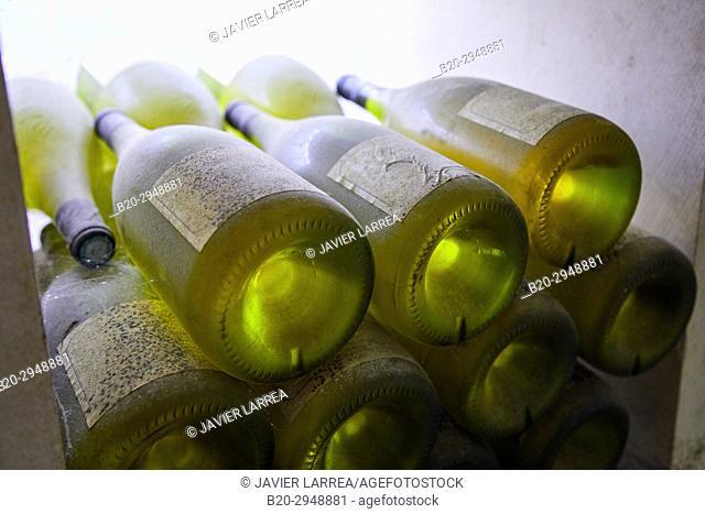 Bottles of white wine, L'Obédiencerie, Domaine Laroche, Wine cellar, Chablis, Yonne, Bourgogne, Burgundy, France, Europe
