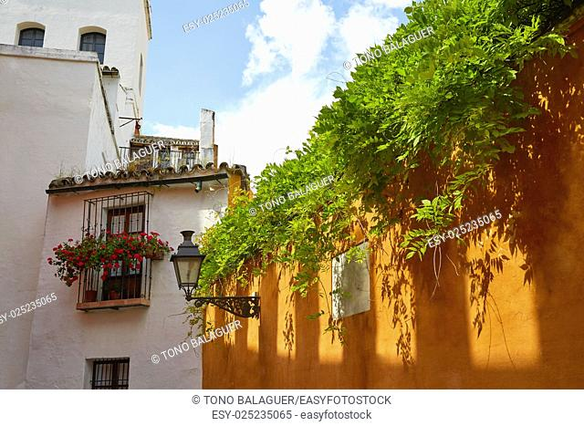 Seville Juderia barrio in Andalusia Sevilla of Spain