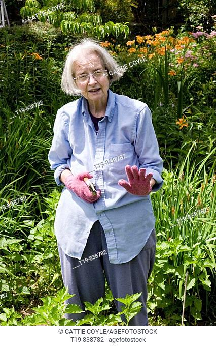 Middle-aged woman working in her garden in Beverly, Massachusetts, USA  MR