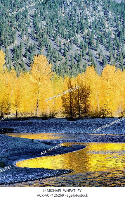 Fall colour, Similkameen River, near Princeton, British Columbia, Canada