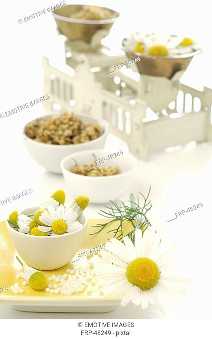 Camomile blossoms in bowls with a scale
