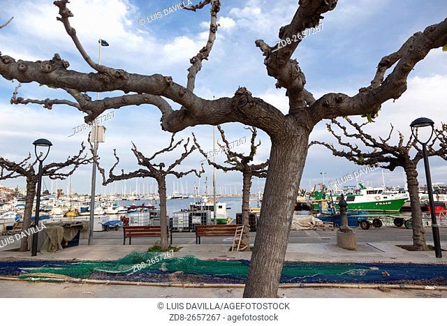 Fishing port. Cambrils. Tarragona. Spain