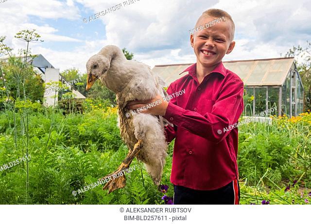 Caucasian boy holding duck on farm