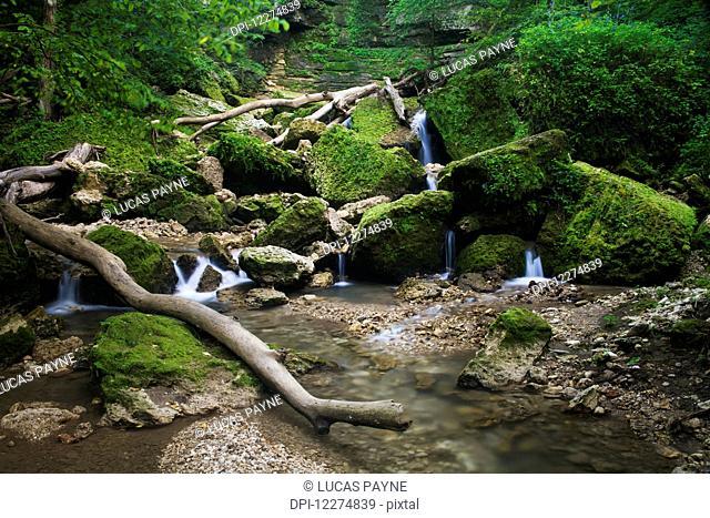Stream flowing through Mossy Glen State Preserve, near Edgewood; Iowa, United States of America