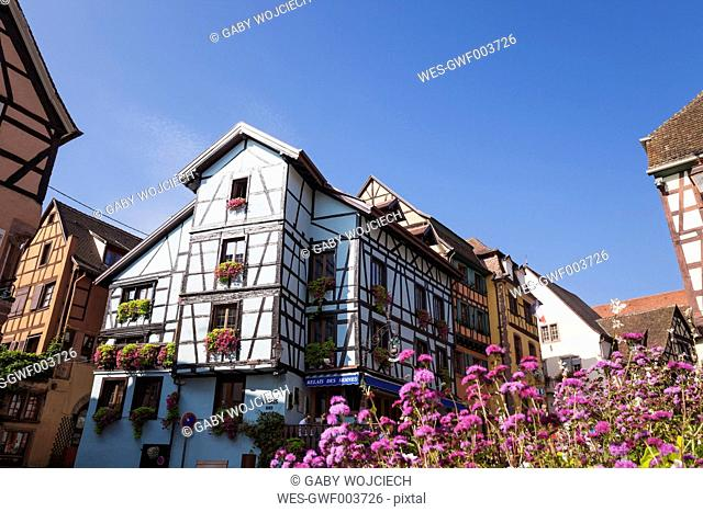 France, Alsace, Alsatian Wine Route, Haut-Rhin, Riquewihr, typical half-timbered historic houses