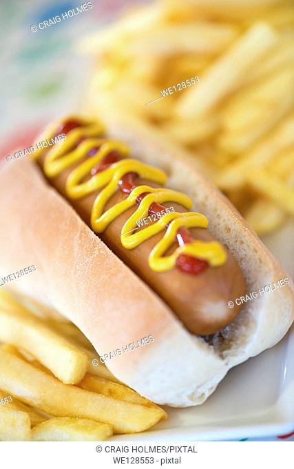 Hot dog and fries