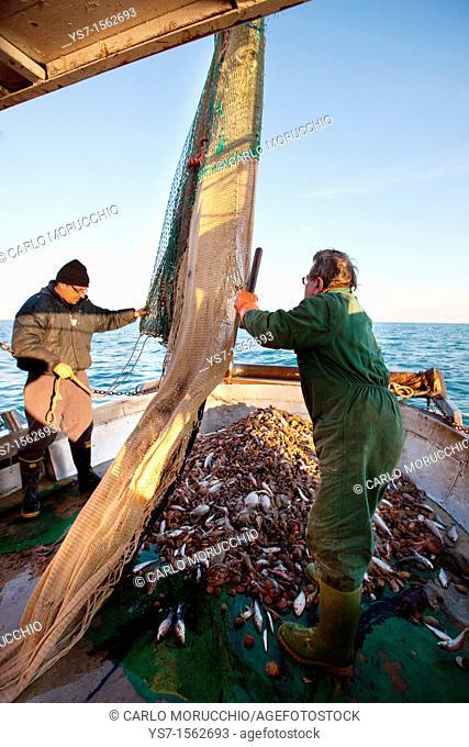 Fishermen at work on a trawler in the north Adriatic sea, Chioggia, Venice province, Italy