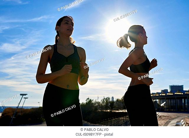 Friends jogging in sports stadium