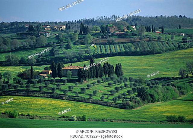 Farmhouses near Pienza Tuscany Italy