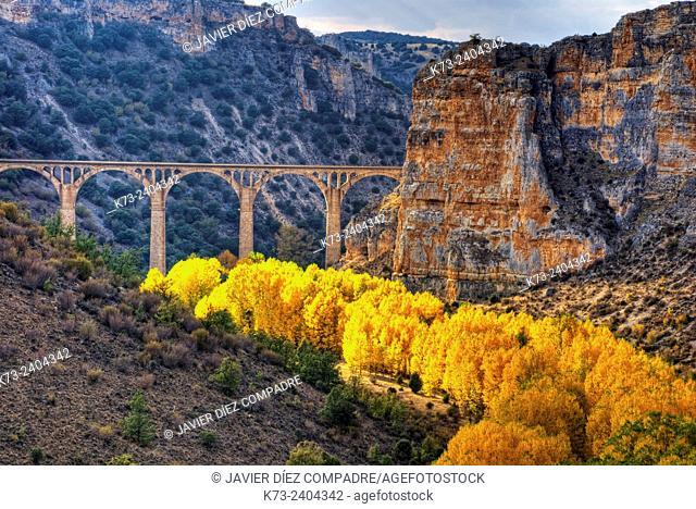 Hoces del Riaza Natural Park. Maderuelo. Segovia province. Castilla y Leon. Spain