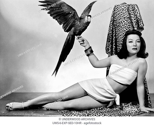 Hollywood, California: c. 1935. .A woman in a sexy two piece outift relaxes on a leopard skin fabric with a parrot on her hand