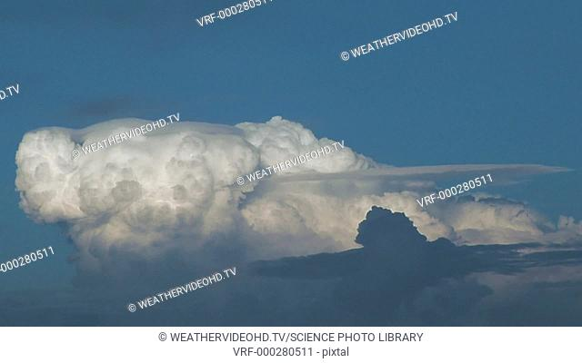 Timelapse footage of fast-growing cumulus clouds with pileus clouds at their tops. Pileus clouds appear as wispy horizontal caps