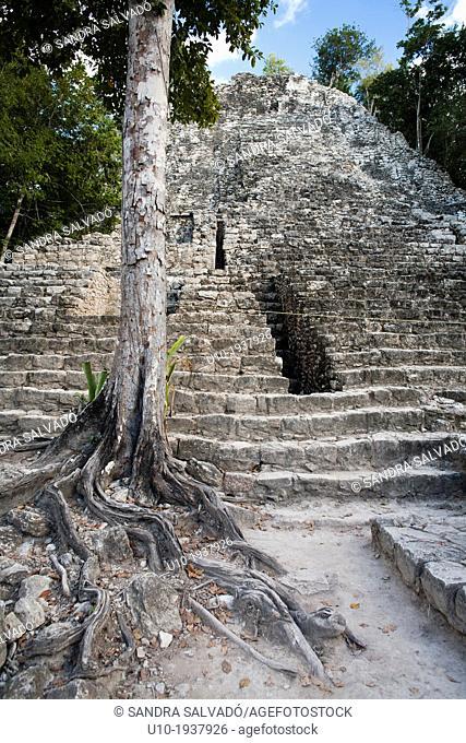 Mayan arqueological site Cobá, Peninsula Yucatan, Mexico