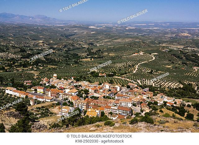 olivos de Jaen, parque natural sierras de Cazorla, Segura y Las Villas, Jaen, Andalucia, Spain
