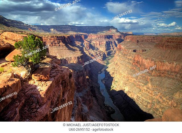 Arizona's Grand Canyon at Toroweap at Grand Canyon National Park