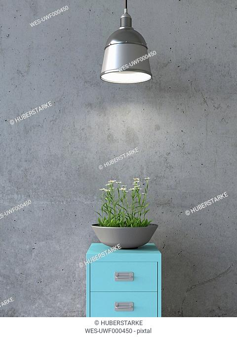 Jardiniere with daisies on illuminated steel cabinet, 3D Rendering