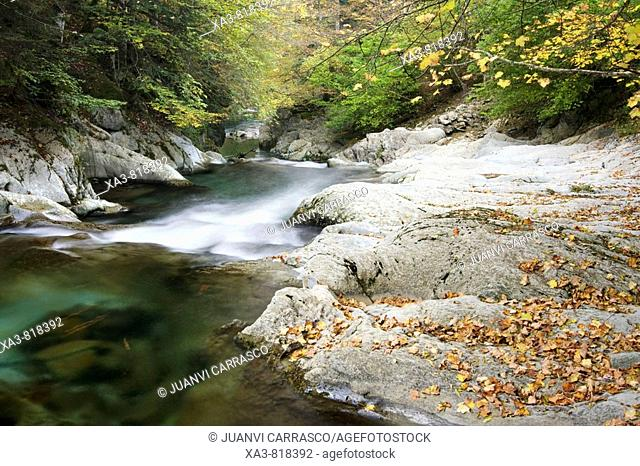 Urbeltza river, Selva de Irati, Navarra, Spanish Pyrenees