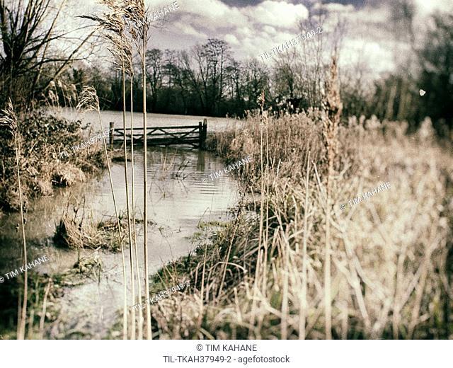 Flood plains in Suffolk winter 2014