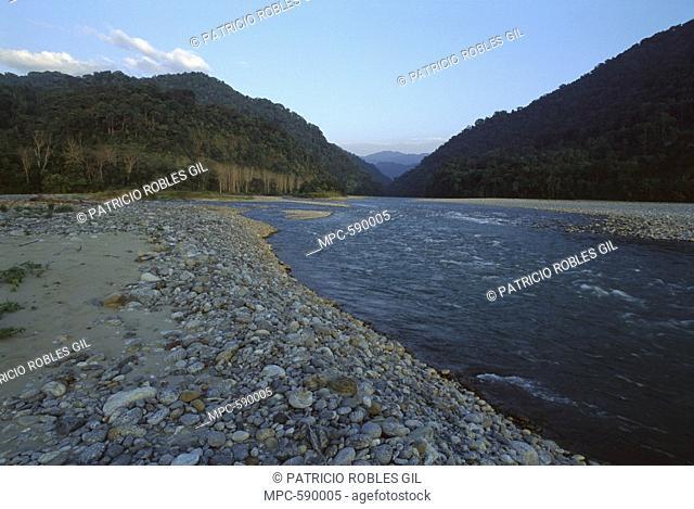 River running through Namdapha National Park, India