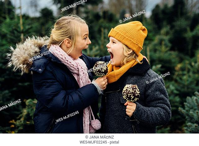 Brother and sister screaming at each other, holding chocolate dipped apples