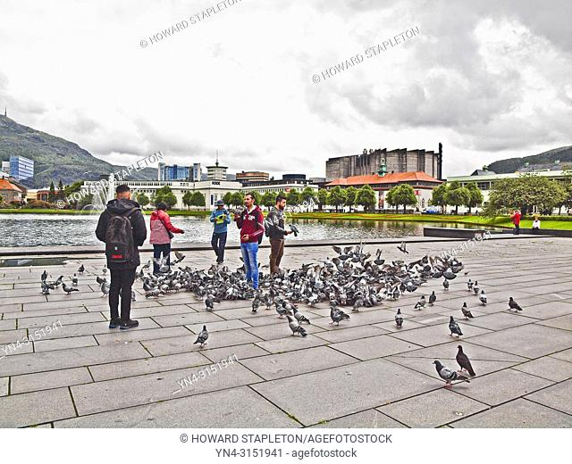 Pigeons and people on the plaza by Lungegaard lake in Bergen, Norway