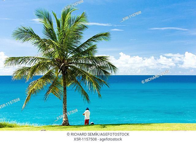 Southern coast of Barbados, Caribbean