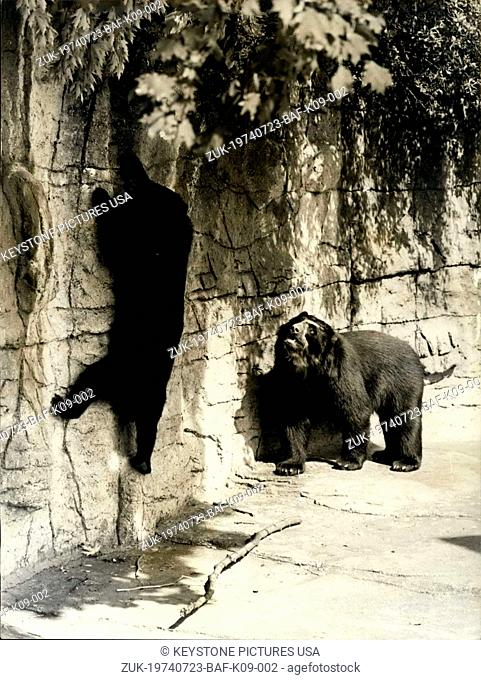 Jul. 23, 1974 - Getting the Bear essentials.. When it comes to feeding time, the animals at the Basle Zoo can't complain, but if you want something special well