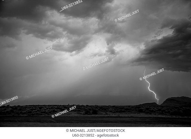 Bolts of lightning permeate the sky durimg a monsoonal storm neat Zion National Park, Utah