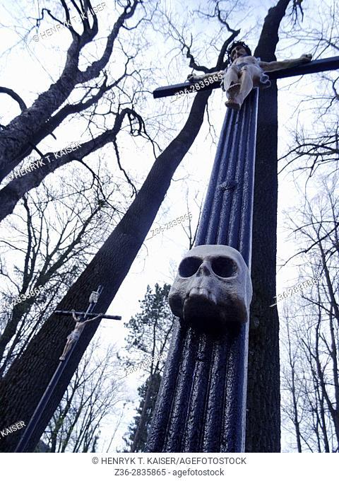 Scull on a cross in Peksowy Brzyzek, the oldest Cemetery in Zakopane, Poland