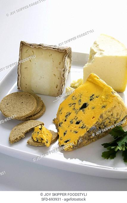 Assorted british cheese with crackers Stock Photos and