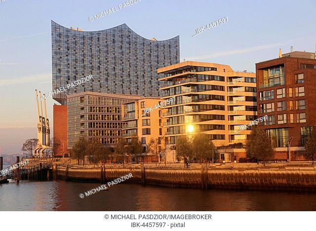 View on Elbphilharmonie and modern apartement buildings, Harbour City, Hamburg, Germany