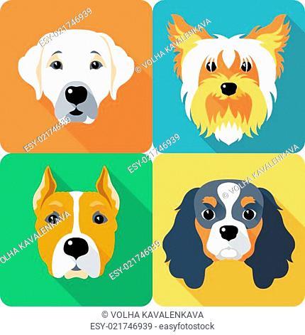 SET dogs icon flat design