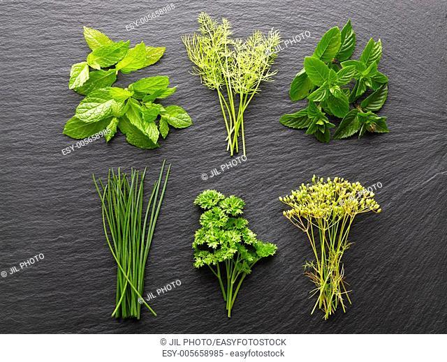 Still life of aromatic herbs