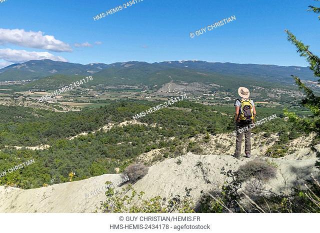 France, Alpes de Haute Provence, hiking near Forcalquier, Montagne de Lure in the background, Parc Naturel Regional du Luberon (Luberon Regional Natural Park)