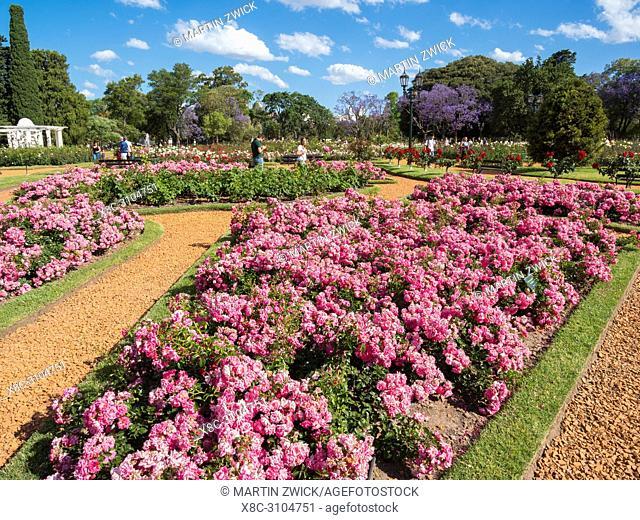 Park Bosques de Palermo in quarter Palermo, the rose garden (El Rosedal de Palermo). Buenos Aires, the capital of Argentina