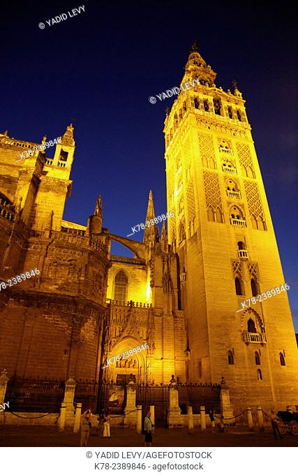 Cathedral and Giralda tower at night, Seville, Andalucia, Spain