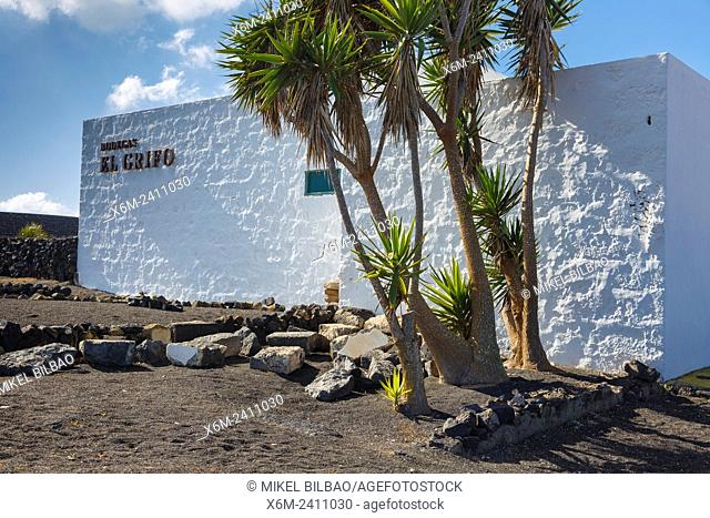 El Grifo wine cellar. San Bartolome, Lanzarote, Canary Islands, Spain, Europe