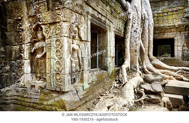Angkor Temples Complex - Ta Prohm Temple - roots of a giant tree on ruins of the Ta Prohm, Angkor, Cambodia, Asia