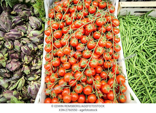 Rome, Italy- Vine tomatoes for sale in Campo de' Fiori, the largest and oldest outdoor market in Rome. It is located south of Piazza Navona
